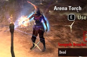 Dragonstar Arena Guide