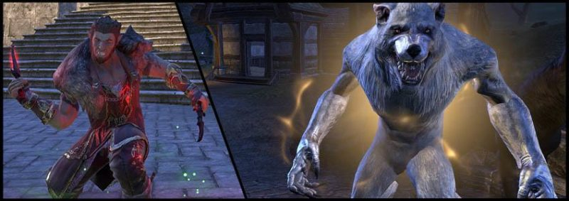 Werewolf Build PvE DPS for Elder Scrolls Online - AlcastHQ