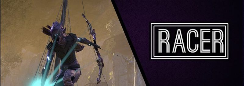 Stamina Warden Bow Build PvE DPS for Elder Scrolls Online - AlcastHQ