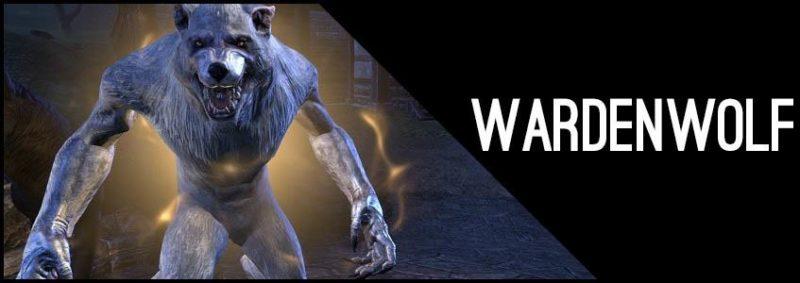 Warden Werewolf Build PvP