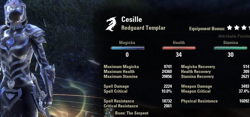 Stamina Templar Build PvP