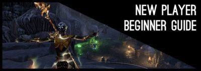 New Player Beginner Guide ESO