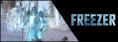 Magicka Warden Build PvP Freezer