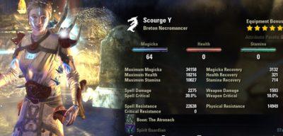 Necromancer Healer