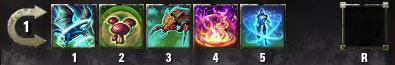 Magicka Warden Level 10 Skillbar
