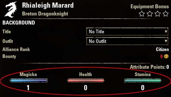 Magicka Dragonknight Attributes