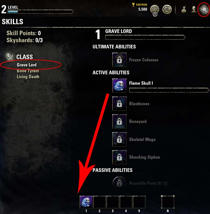 Magicka Necromancer Skills Nara