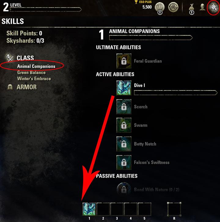 Magicka Warden Skills