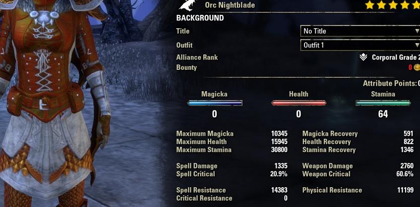 Stamina Nightblade Bow Build PvE DPS for Elder Scrolls