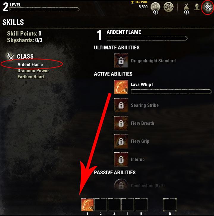Stamina Dragonknight Beginner Guide Skills