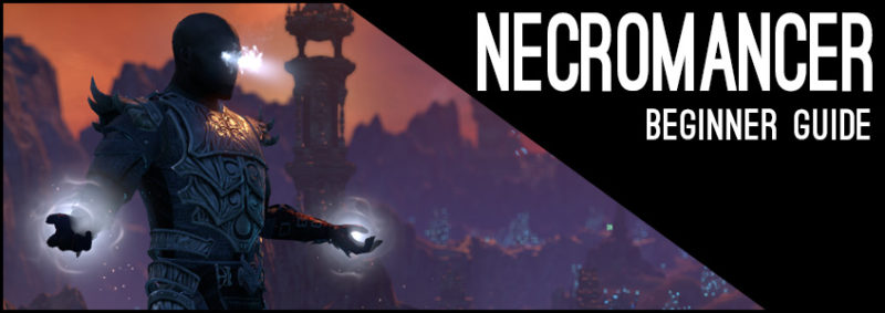 Stamina Necromancer Beginner Guide for Elder Scrolls Online - AlcastHQ