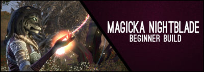 Magicka Nightblade Beginner Guide CP 160