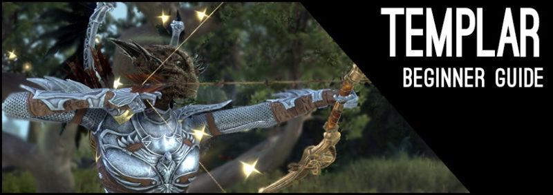 Stamina Templar Beginner Guide for Elder Scrolls Online