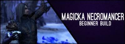 Magicka Necromancer Beginner Guide CP 160