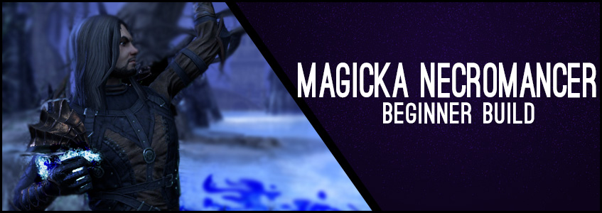 Magicka Necromancer Beginner Guide CP 160