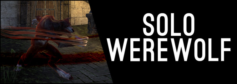 847 solo werewolf banner