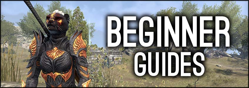 ESO Beginner Guides Banner, Khajiit meditating in the Gold Coast ESO