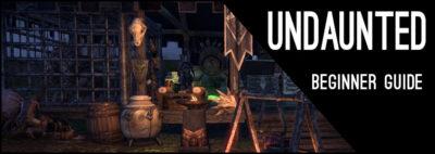 Undaunted Beginner Guide Header