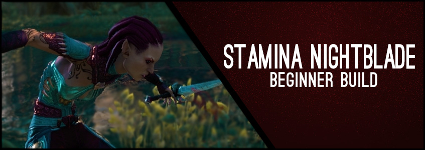 Stamina Nightblade Header