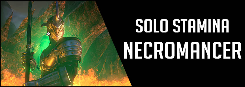 Solo Stamina Necromancer PvE Build Banner picture