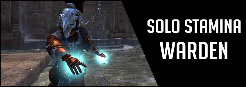 Solo Stamina Warden PvE Build Banner picture