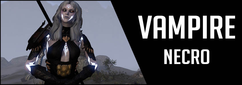 847x300 solo vamp necro setup banner
