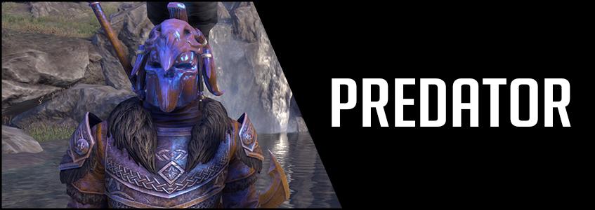 2H Stamina Warden Build PVE DPS Predator Banner Image